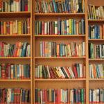 decentemente, prateleira, livros